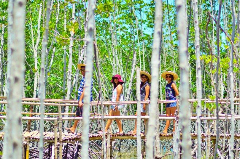 Omagieca, Mangrove Sanctuary in Obo-ob, Bantayan