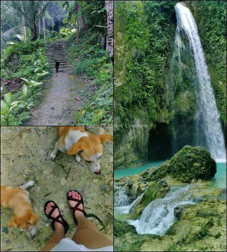 Tour guides in Inambakan Falls (dogS!)