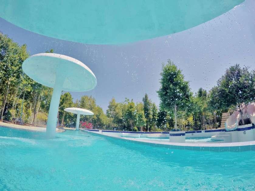 Hale Manna - Swimming Pool