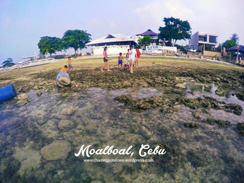 Moalboal 2