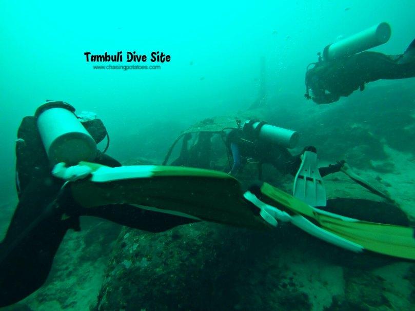 Talima and Tambuli Dive Sites