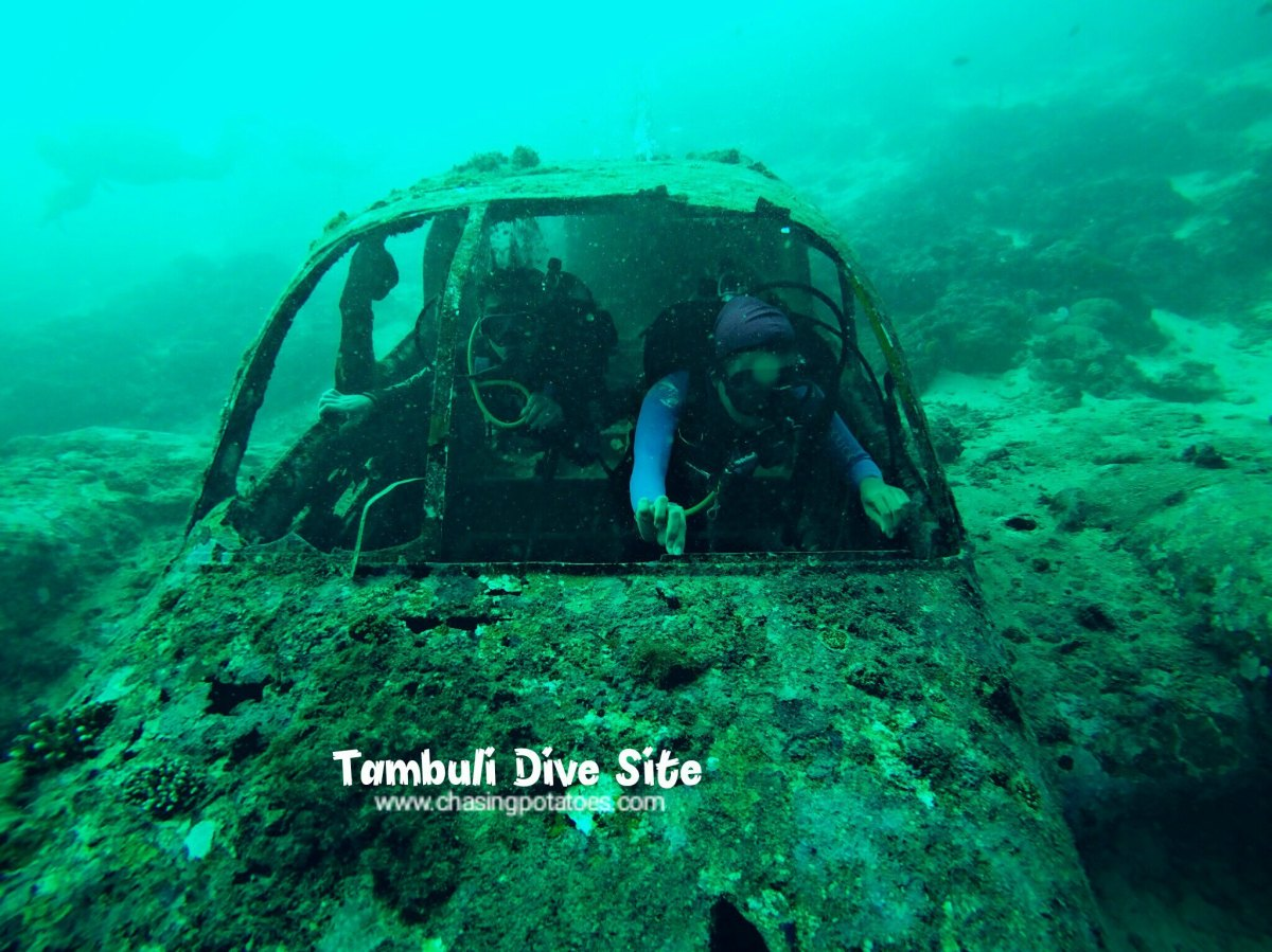 Talima and Tambuli Dive Sites: Experiencing Cebu's Scuba Diving into theWreckage