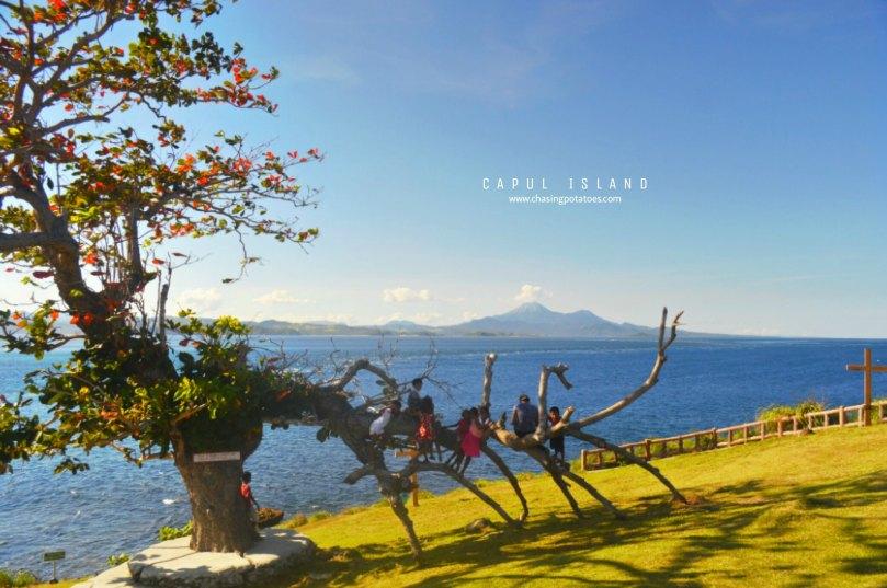 CAPUL ISLAND 6