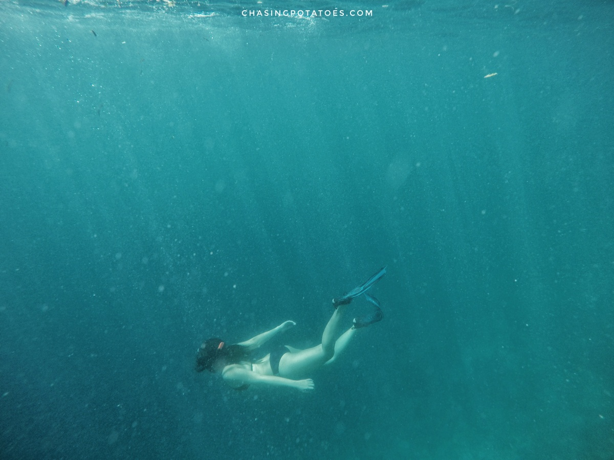 My Experiences in My Journey to Freediving Which Probably May Entice You to Try