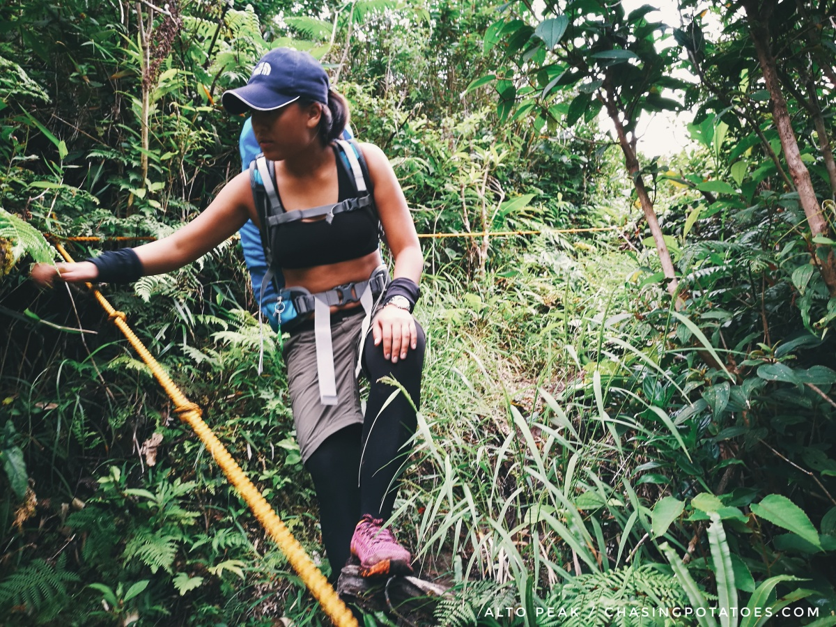Alto Peak : Climbing The Highest Peak In Eastern Visayas that Made Me Cry, Well Almost
